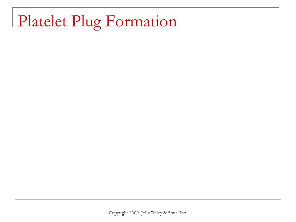 Copyright 2009, John Wiley & Sons, Inc. Platelet Plug Formation
