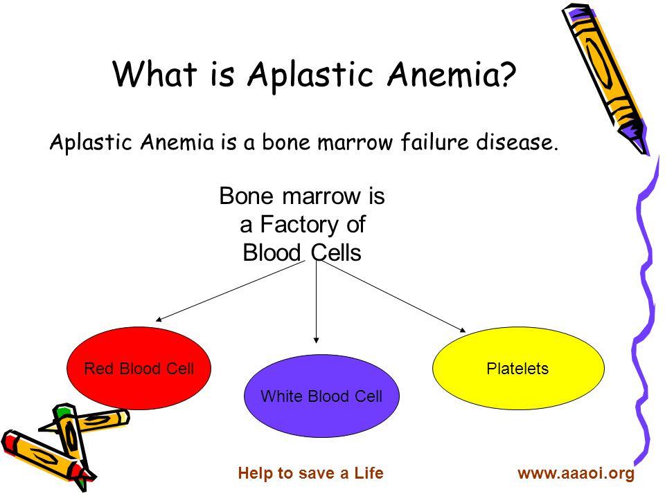 Acquired Aplastic Anemia