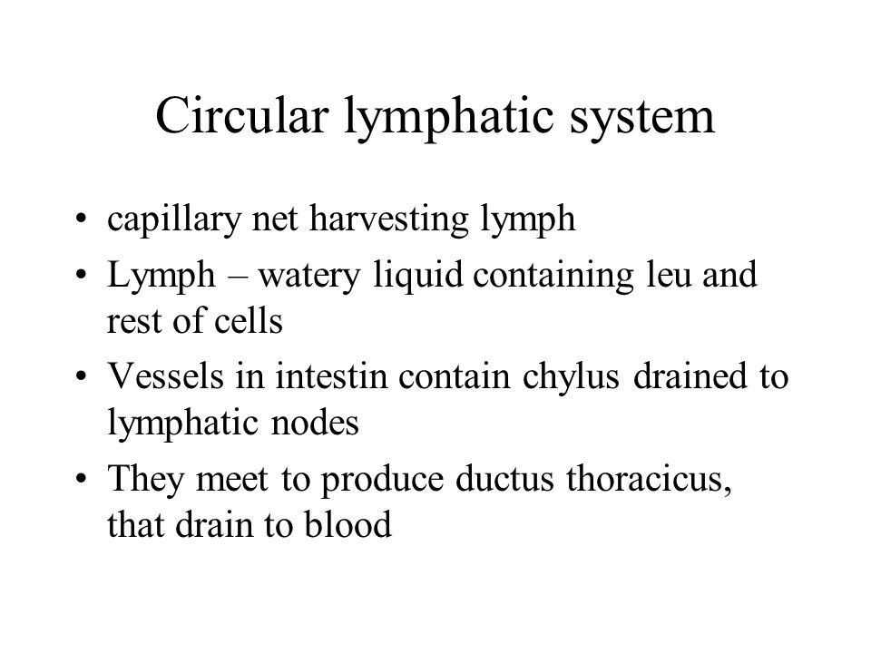 Circular lymphatic system capillary net harvesting lymph Lymph – watery liquid containing leu and rest of cells Vessels in intestin contain chylus dra