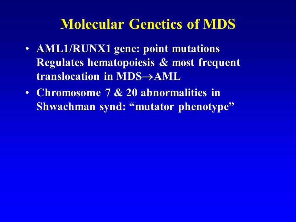 Molecular Genetics of MDS AML1/RUNX1 gene: point mutations Regulates hematopoiesis & most frequent translocation in MDS  AML Chromosome 7 & 20 abnormalities in Shwachman synd: mutator phenotype