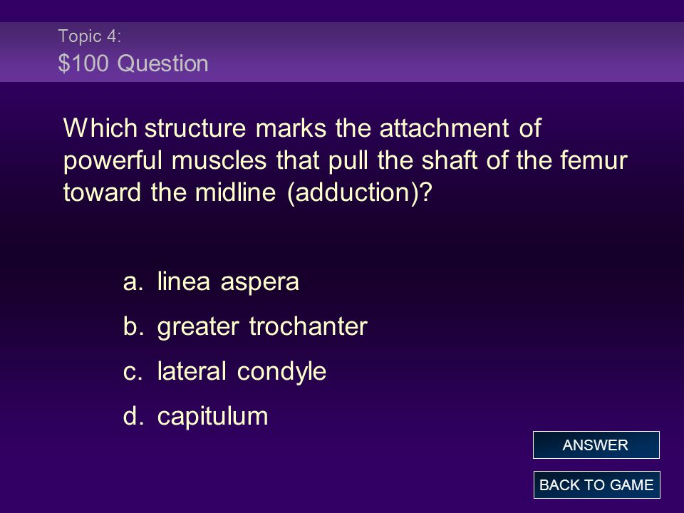 Topic 4: $100 Question Which structure marks the attachment of powerful muscles that pull the shaft of the femur toward the midline (adduction).