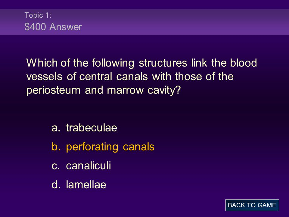 Topic 4: $500 Question Which structure provides medial support for the ankle.