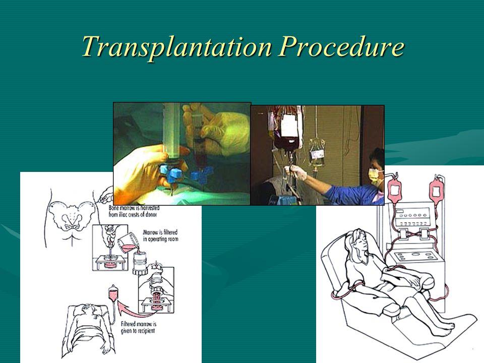 Transplantation Procedure