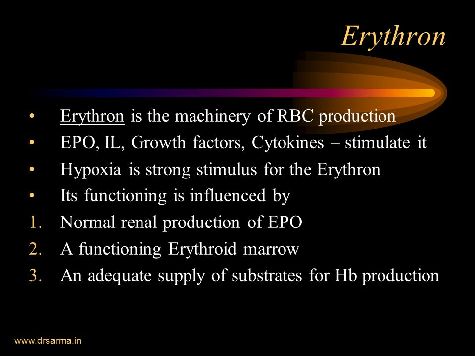 www.drsarma.in Erythron Erythron is the machinery of RBC production EPO, IL, Growth factors, Cytokines – stimulate it Hypoxia is strong stimulus for the Erythron Its functioning is influenced by 1.Normal renal production of EPO 2.A functioning Erythroid marrow 3.An adequate supply of substrates for Hb production
