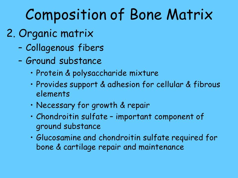 Composition of Bone Matrix 2.