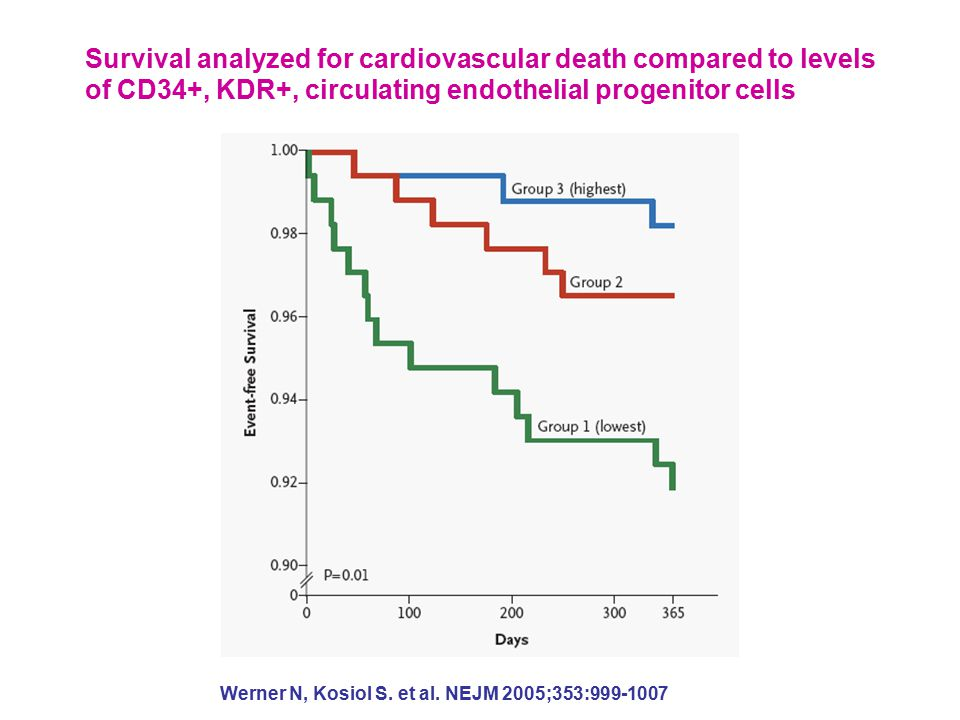 Survival analyzed for cardiovascular death compared to levels of CD34+, KDR+, circulating endothelial progenitor cells Werner N, Kosiol S.