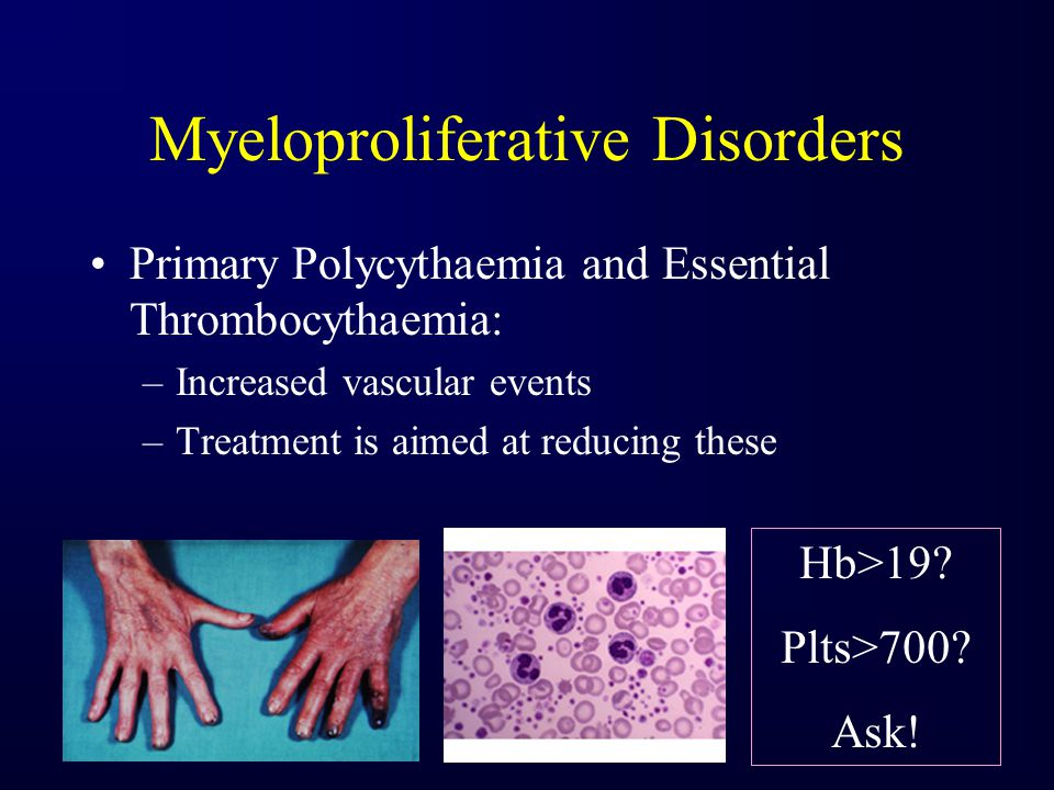 Myeloproliferative Disorders Primary Polycythaemia and Essential Thrombocythaemia: –Increased vascular events –Treatment is aimed at reducing these Hb