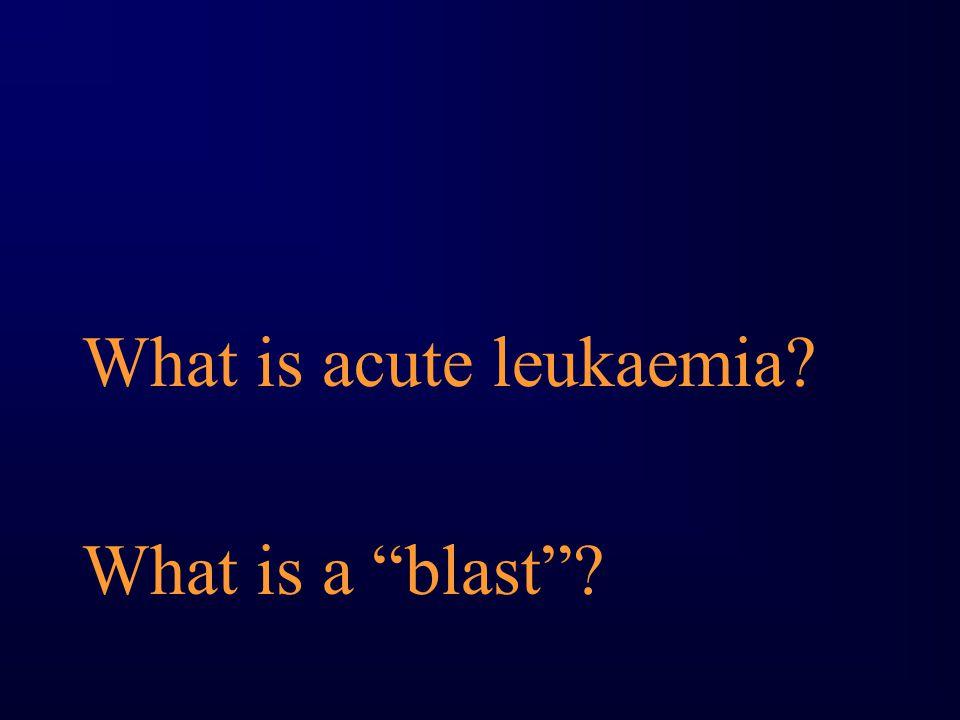 "What is acute leukaemia? What is a ""blast""?"