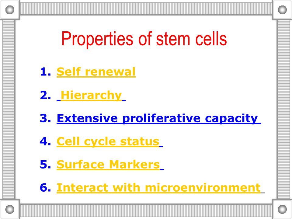 Properties of stem cells 1.Self renewalSelf renewal 2.