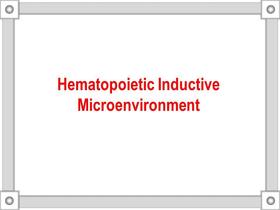 Hematopoietic Inductive Microenvironment