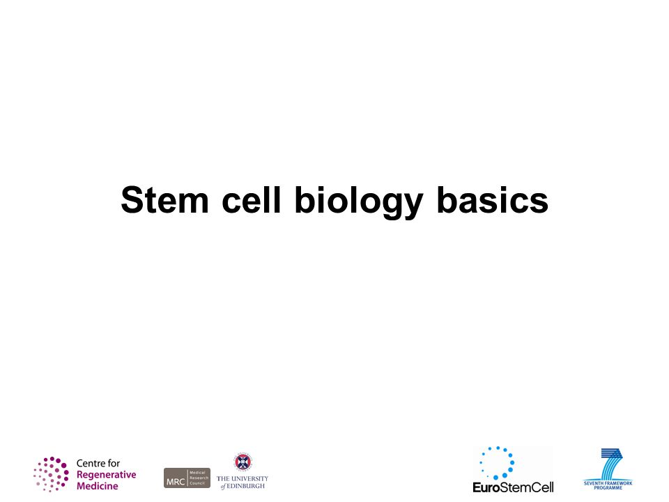 Stem cell biology basics