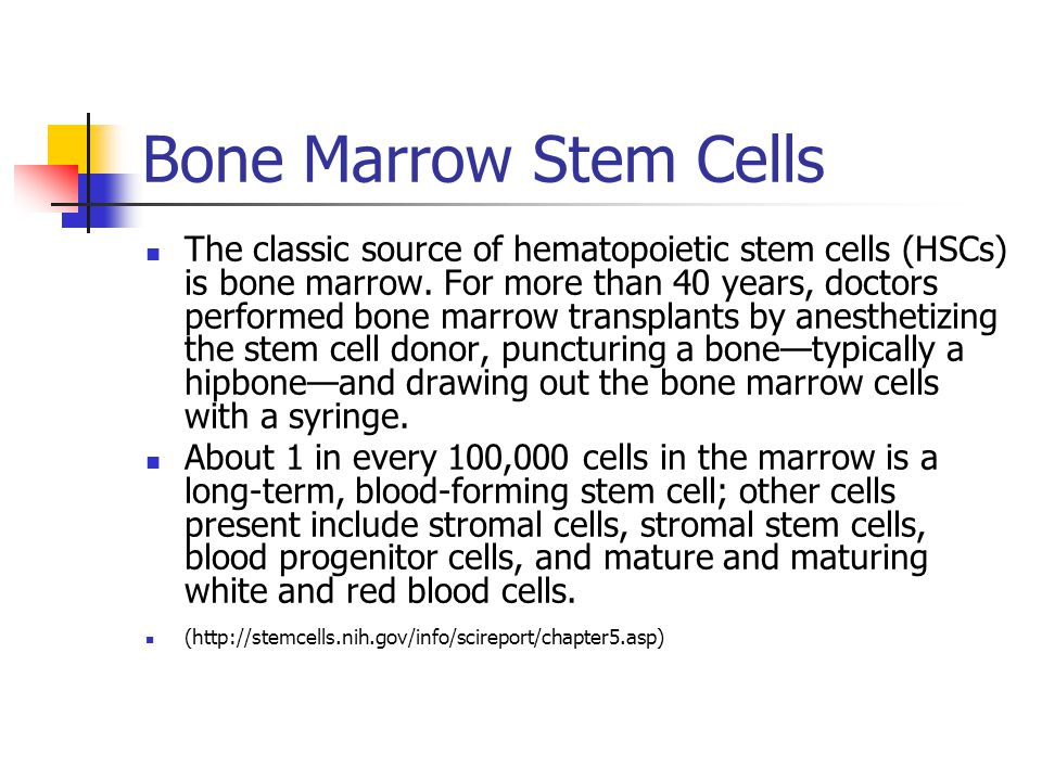Bone Marrow Stem Cells The classic source of hematopoietic stem cells (HSCs) is bone marrow.