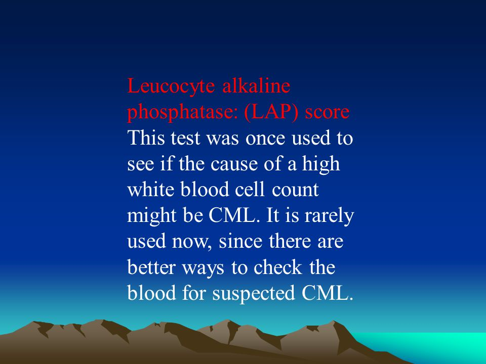Leucocyte alkaline phosphatase: (LAP) score This test was once used to see if the cause of a high white blood cell count might be CML.