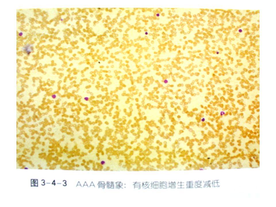 AAA blood film