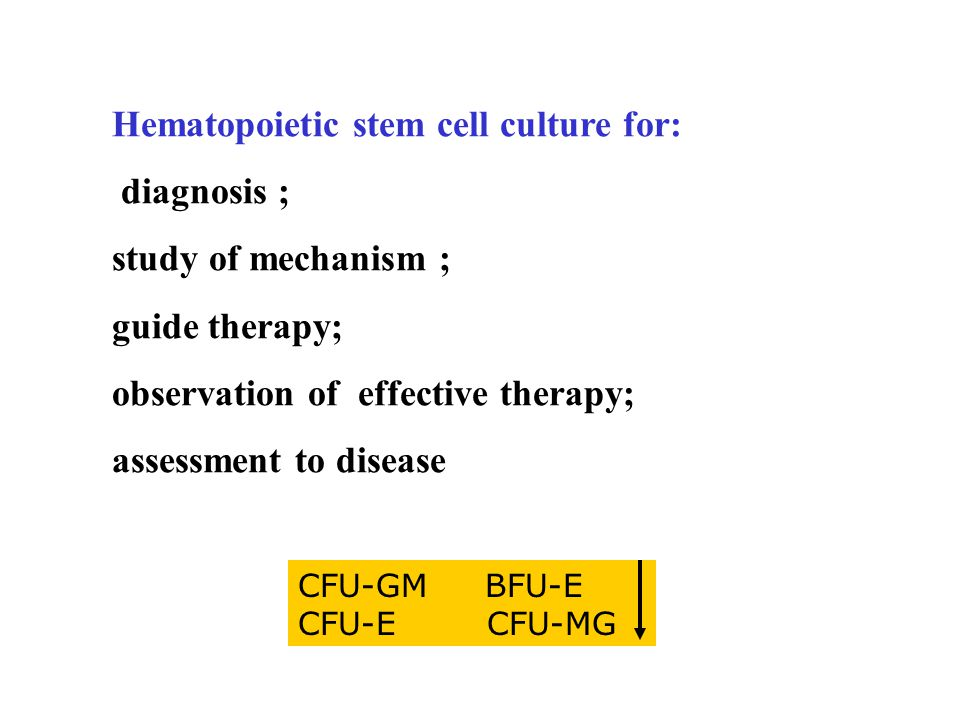 Hematopoietic stem cell culture for: diagnosis ; study of mechanism ; guide therapy; observation of effective therapy; assessment to disease CFU-GM BFU-E CFU-E CFU-MG
