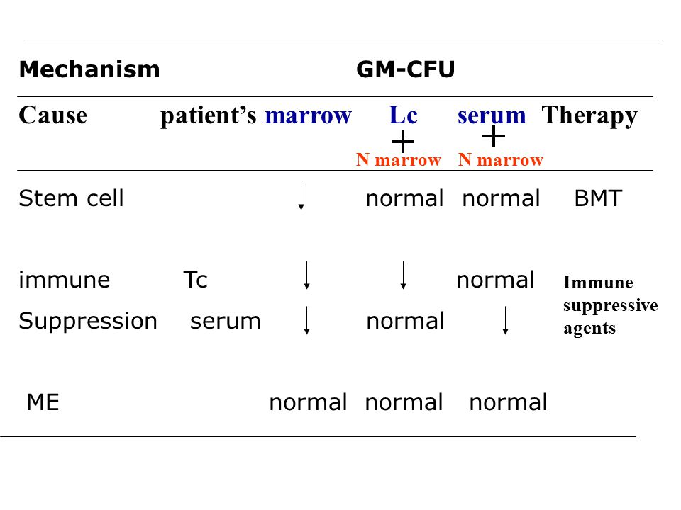 Mechanism GM-CFU Cause patient's marrow Lc serum Therapy N marrow N marrow Stem cell normal normal BMT immune Tc normal Suppression serum normal ME normal normal normal Immune suppressive agents