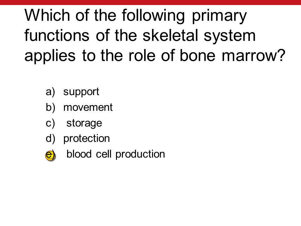 Which of the following primary functions of the skeletal system applies to the role of bone marrow.
