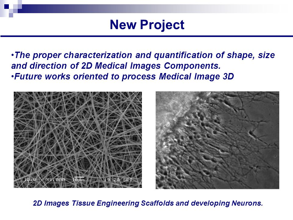 New Project The proper characterization and quantification of shape, size and direction of 2D Medical Images Components.