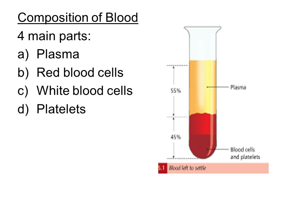 Composition of Blood 4 main parts: a)Plasma b)Red blood cells c)White blood cells d)Platelets
