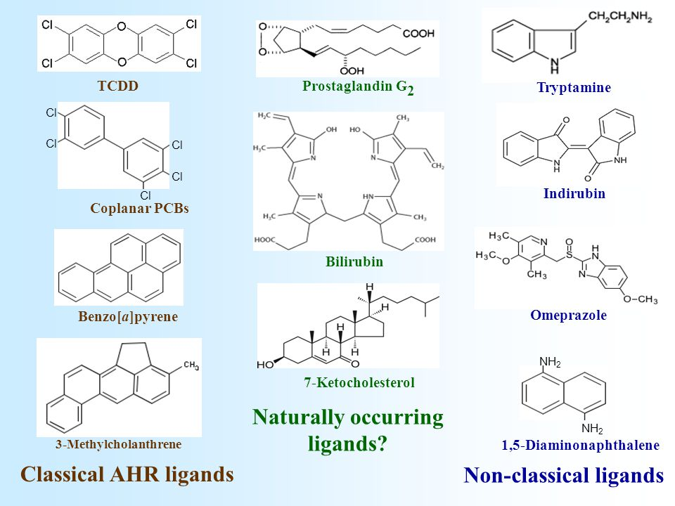 TCDD Cl Coplanar PCBs Benzo[a]pyrene 3-Methylcholanthrene Classical AHR ligands Naturally occurring ligands.