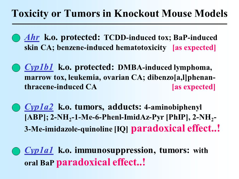 Toxicity or Tumors in Knockout Mouse Models Cyp1a2 k.o.