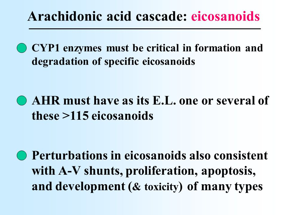 Arachidonic acid cascade: eicosanoids AHR must have as its E.L. one or several of these >115 eicosanoids CYP1 enzymes must be critical in formation an