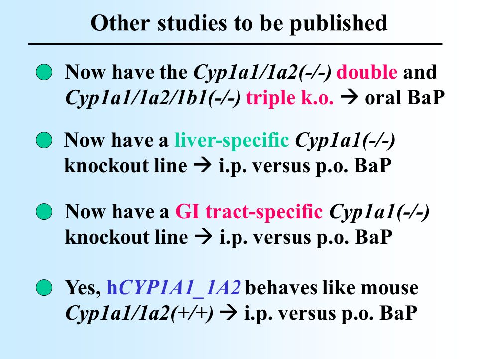 Other studies to be published Now have a liver-specific Cyp1a1(-/-) knockout line  i.p. versus p.o. BaP Now have the Cyp1a1/1a2(-/-) double and Cyp1a