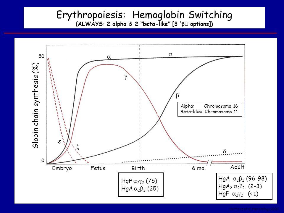 "Erythropoiesis: Hemoglobin Switching (ALWAYS: 2 alpha & 2 ""beta-like"" [3 '  ' options]) EmbryoFetusBirth Adult 6 mo. Globin chain synthesis (%) 0 50"