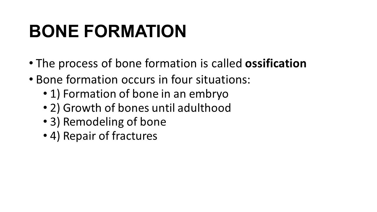 BONE FORMATION The process of bone formation is called ossification Bone formation occurs in four situations: 1) Formation of bone in an embryo 2) Gro