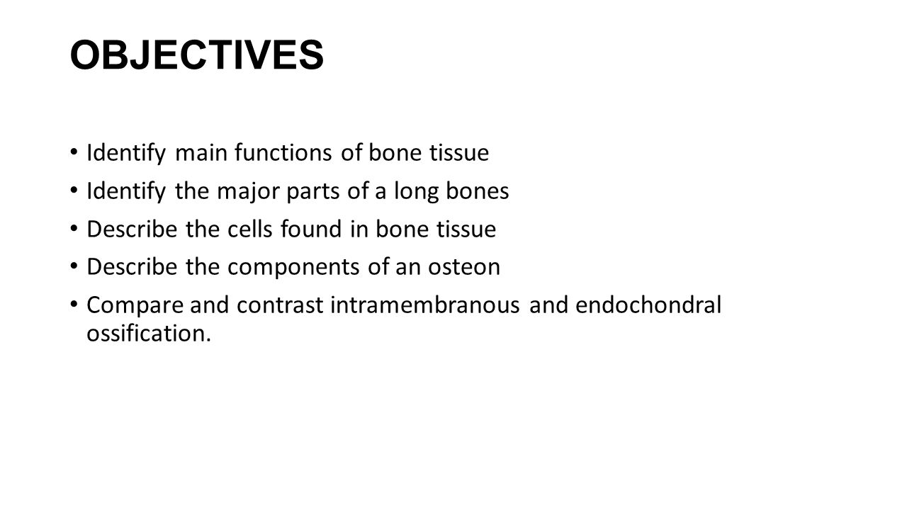 OBJECTIVES Identify main functions of bone tissue Identify the major parts of a long bones Describe the cells found in bone tissue Describe the compon