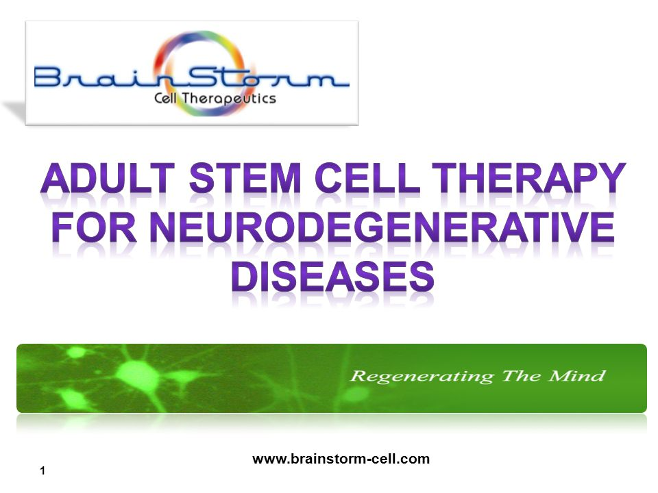 BrainStorm is a leading developer of stem cell technologies to provide treatments for currently incurable neurodegenerative diseases.