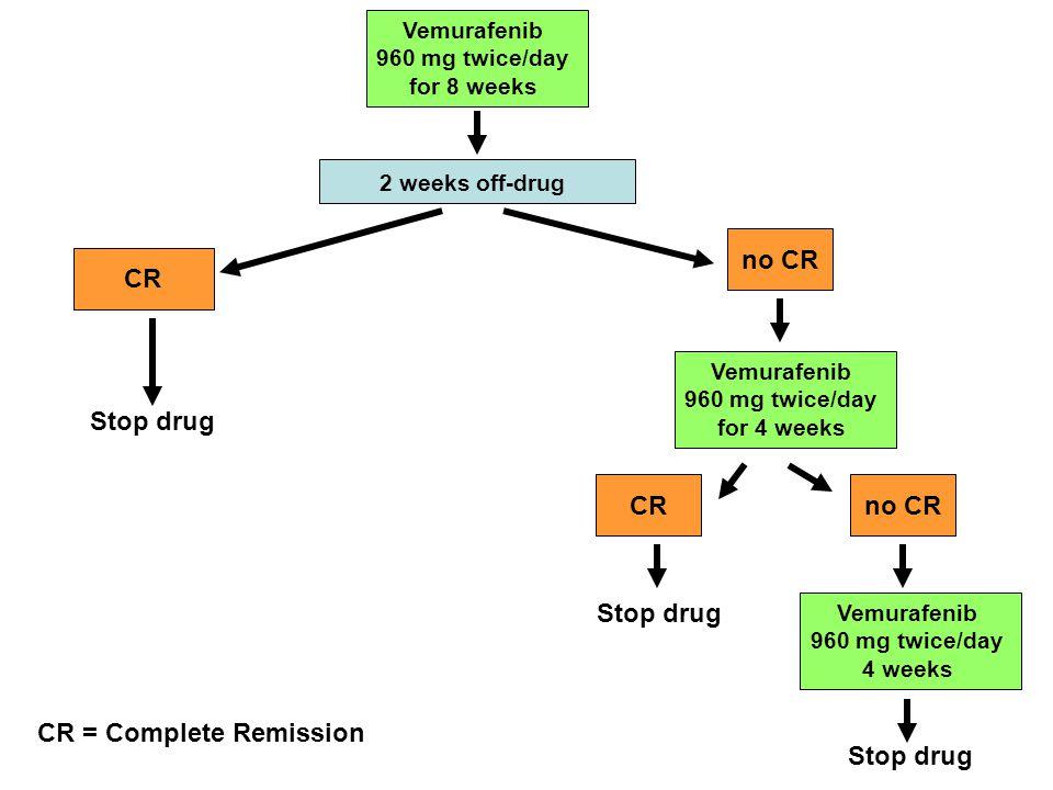 Vemurafenib 960 mg twice/day for 8 weeks CR 2 weeks off-drug Stop drug Vemurafenib 960 mg twice/day for 4 weeks no CRCR no CR Vemurafenib 960 mg twice
