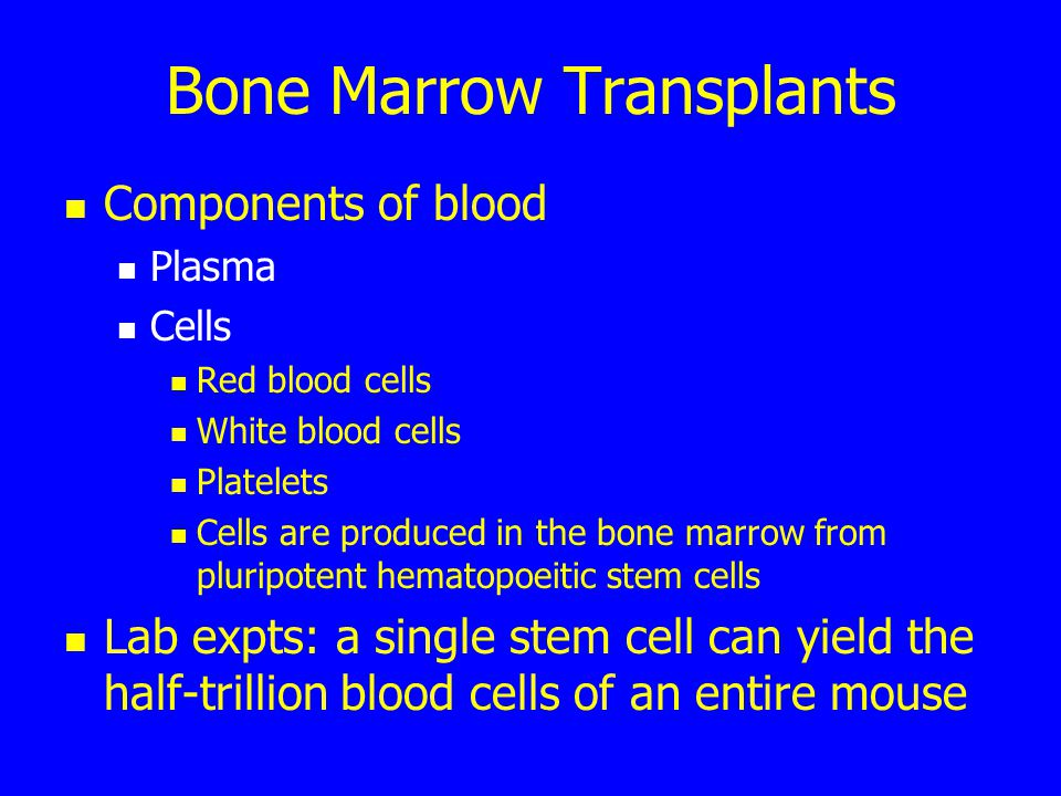 Bone Marrow Transplants Components of blood Plasma Cells Red blood cells White blood cells Platelets Cells are produced in the bone marrow from pluripotent hematopoeitic stem cells Lab expts: a single stem cell can yield the half-trillion blood cells of an entire mouse