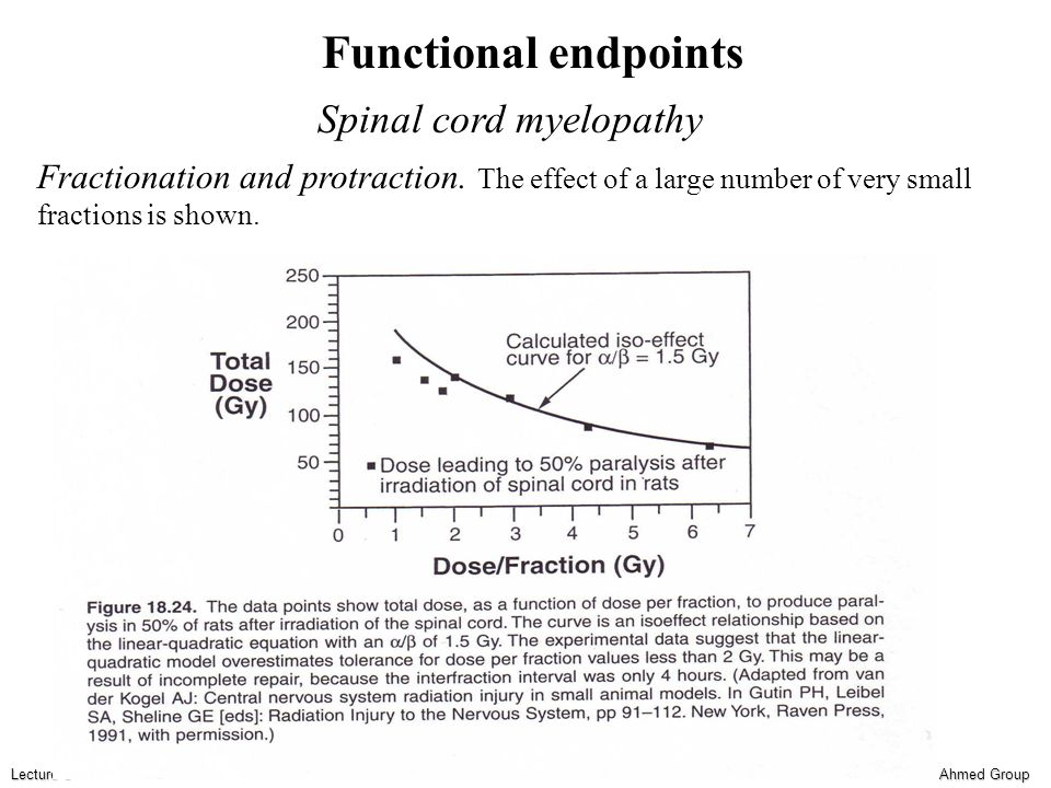 Ahmed Group Lecture 6 Functional endpoints Spinal cord myelopathy Fractionation and protraction.