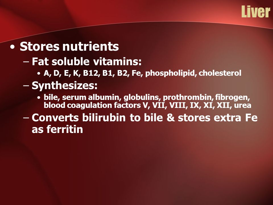 Liver Stores nutrients –Fat soluble vitamins: A, D, E, K, B12, B1, B2, Fe, phospholipid, cholesterol –Synthesizes: bile, serum albumin, globulins, prothrombin, fibrogen, blood coagulation factors V, VII, VIII, IX, XI, XII, urea –Converts bilirubin to bile & stores extra Fe as ferritin