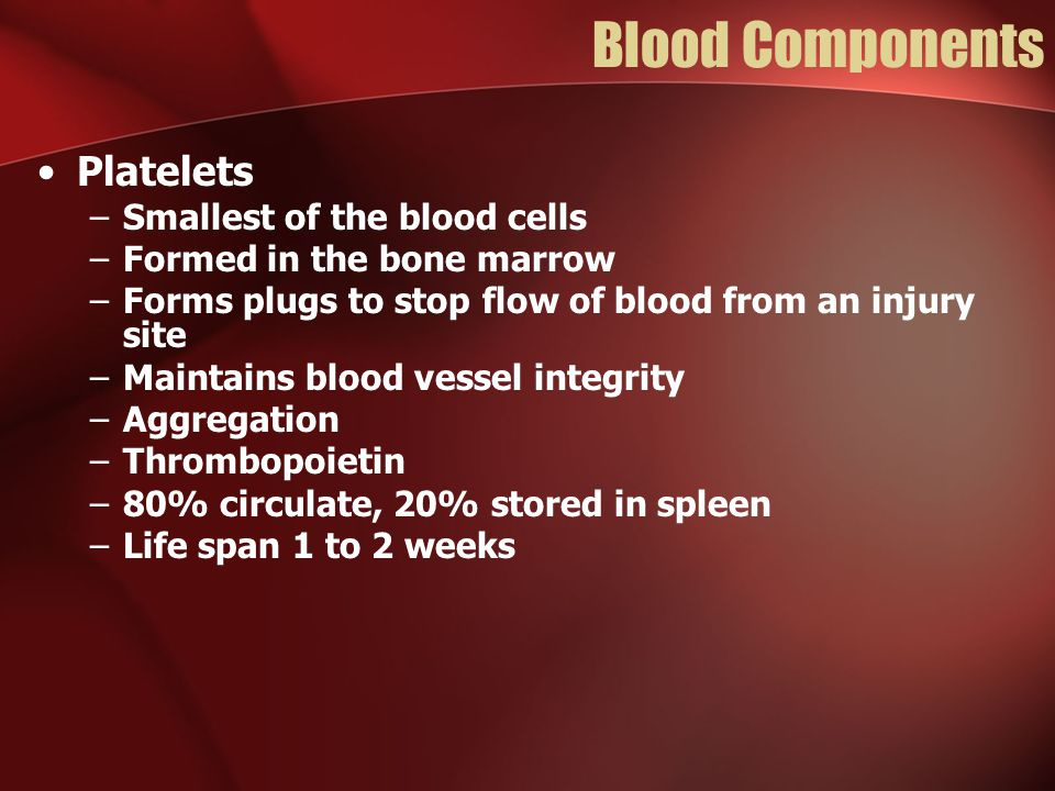 Blood Components Platelets –Smallest of the blood cells –Formed in the bone marrow –Forms plugs to stop flow of blood from an injury site –Maintains blood vessel integrity –Aggregation –Thrombopoietin –80% circulate, 20% stored in spleen –Life span 1 to 2 weeks
