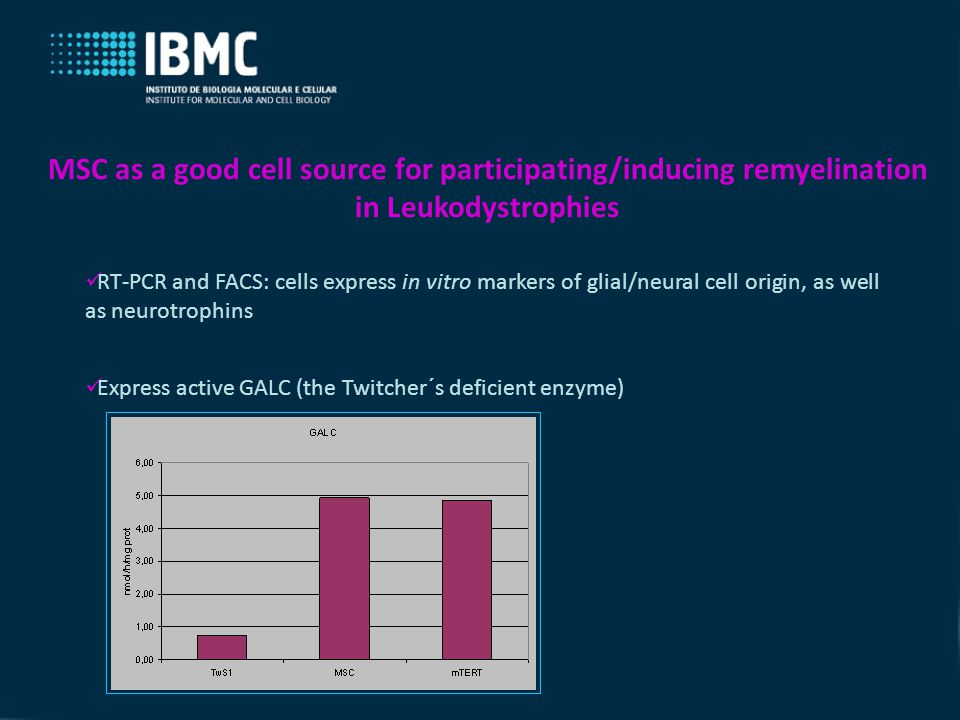 RT-PCR and FACS: cells express in vitro markers of glial/neural cell origin, as well as neurotrophins MSC as a good cell source for participating/inducing remyelination in Leukodystrophies Express active GALC (the Twitcher´s deficient enzyme)