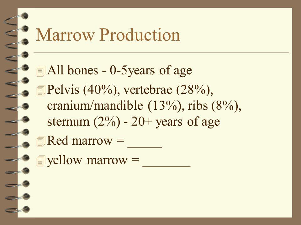 Marrow Production 4 All bones - 0-5years of age 4 Pelvis (40%), vertebrae (28%), cranium/mandible (13%), ribs (8%), sternum (2%) - 20+ years of age 4 Red marrow = _____ 4 yellow marrow = _______