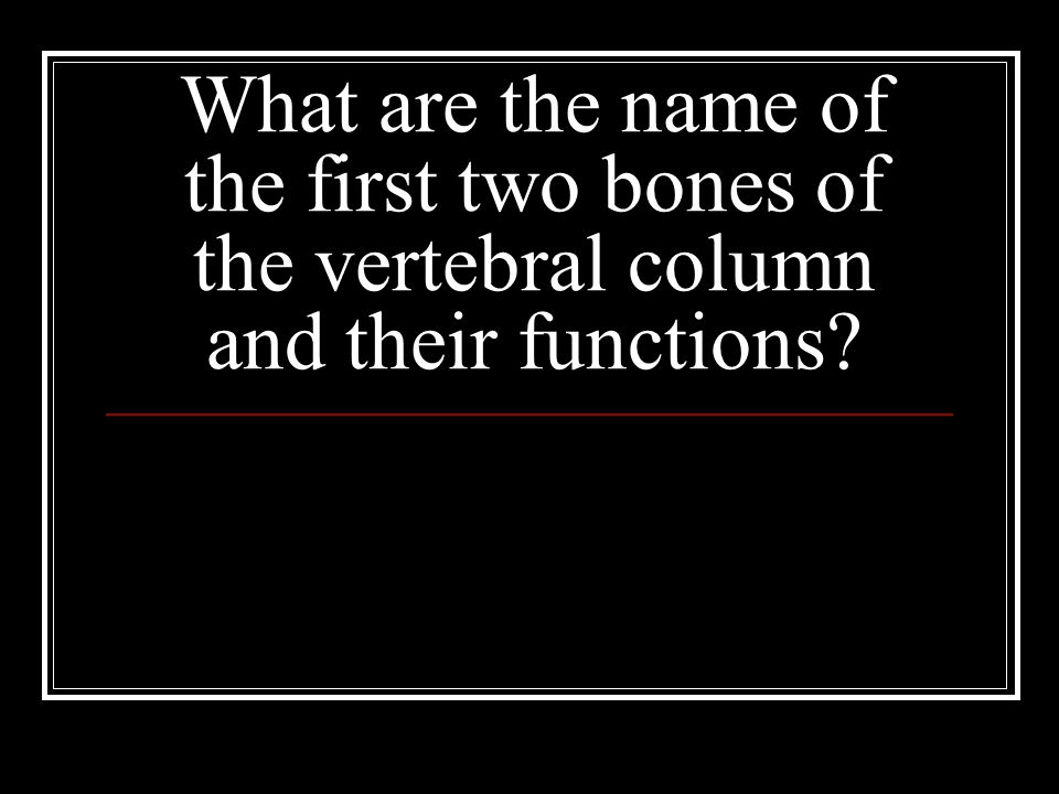 What are the name of the first two bones of the vertebral column and their functions?