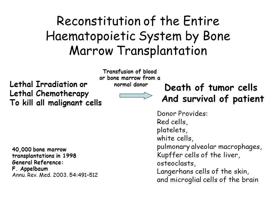 Reconstitution of the Entire Haematopoietic System by Bone Marrow Transplantation Transfusion of blood or bone marrow from a normal donor Lethal Irrad