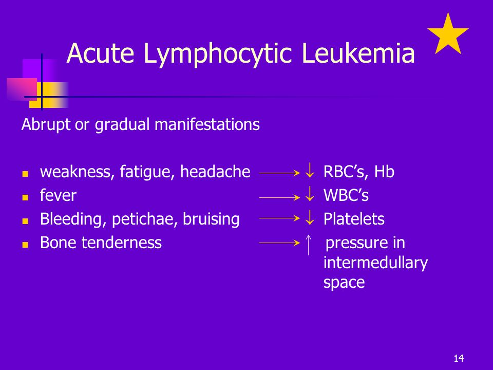 Acute Lymphocytic Leukemia Abrupt or gradual manifestations weakness, fatigue, headache fever Bleeding, petichae, bruising Bone tenderness  RBC's, Hb