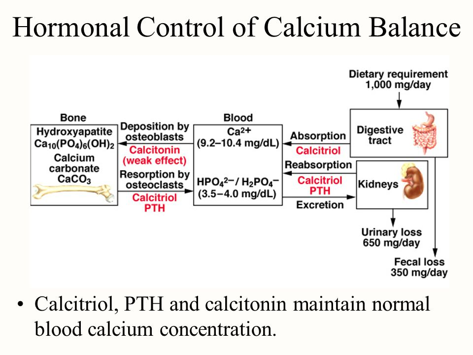 Hormonal Control of Calcium Balance Calcitriol, PTH and calcitonin maintain normal blood calcium concentration.