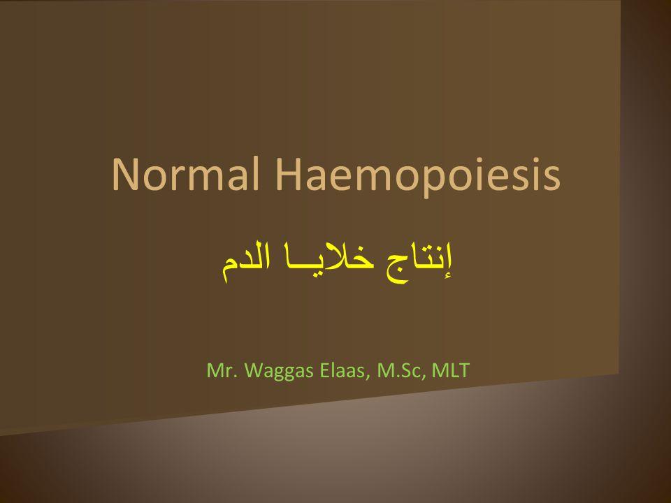 Normal Haemopoiesis إنتاج خلايــا الدم Mr. Waggas Elaas, M.Sc, MLT