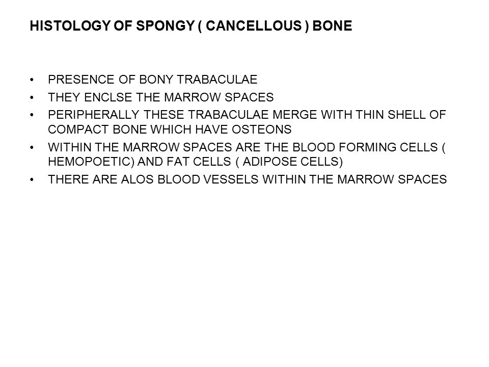 HISTOLOGY OF SPONGY ( CANCELLOUS ) BONE PRESENCE OF BONY TRABACULAE THEY ENCLSE THE MARROW SPACES PERIPHERALLY THESE TRABACULAE MERGE WITH THIN SHELL OF COMPACT BONE WHICH HAVE OSTEONS WITHIN THE MARROW SPACES ARE THE BLOOD FORMING CELLS ( HEMOPOETIC) AND FAT CELLS ( ADIPOSE CELLS) THERE ARE ALOS BLOOD VESSELS WITHIN THE MARROW SPACES