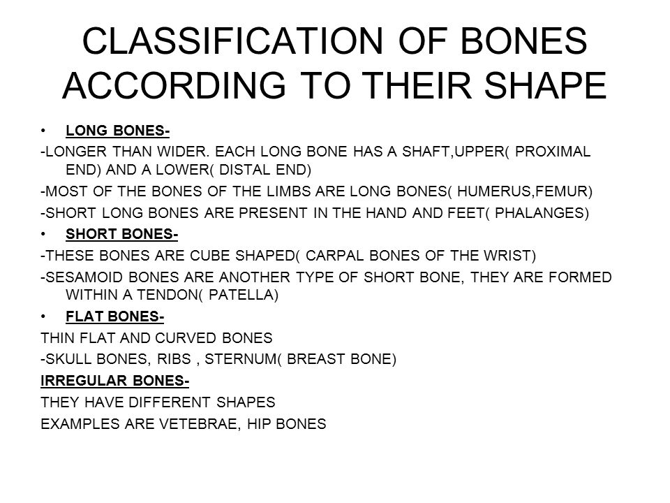 CLASSIFICATION-2 BASED ON THE LOCATION -FRONTALIS( PRSENT IN THE FRONTAL REGION) BASED ON THE NUMBER OF ORIGINS -BICEPS( 2 ORIGINS, 2 BELLIES) -TRICEPS( 3 ORIGINS, 3 BELLIES) -QUADRICEPS( 4 ORIGINS,4 BELLIES) BASED ON THE LOCATION OF ORIGIN AND INSERTION -STRENOCLIEDOMASTOID.( ORIGIN ON THE STERNUM AND CLAVICLE AND INSERTION ON THE MASTOID PROCESS) -BASED ON SHAPE OF THE MUSCLE -DELTOID( SHAPE OF A TRIANGLE) -TRAPEZIUS( TRAPEZOID IN SHAPE) -BASED ON ACTION OF THE MUSCLE -EXTENSORS( CAUSE EXTENSION)