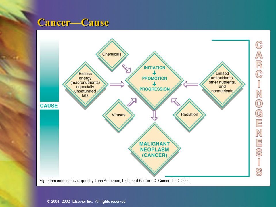 © 2004, 2002 Elsevier Inc. All rights reserved. Cancer—Cause Algorithm content developed by John Anderson, PhD, and Sanford C. Garner, PhD, 2000.