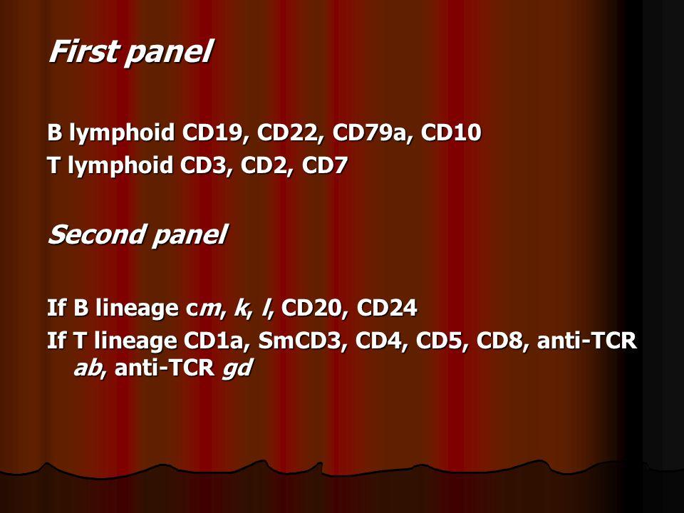 First panel B lymphoid CD19, CD22, CD79a, CD10 T lymphoid CD3, CD2, CD7 Second panel If B lineage cm, k, l, CD20, CD24 If T lineage CD1a, SmCD3, CD4, CD5, CD8, anti-TCR ab, anti-TCR gd