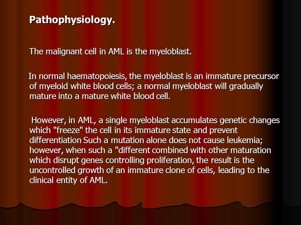 Pathophysiology.Pathophysiology. The malignant cell in AML is the myeloblast.