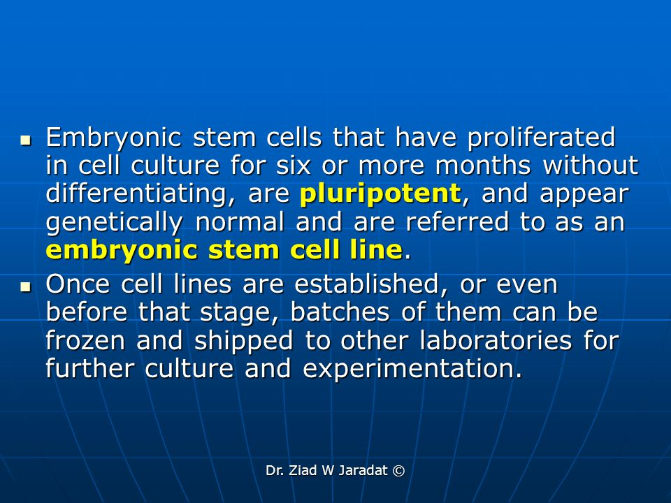 Dr. Ziad W Jaradat © Embryonic stem cells that have proliferated in cell culture for six or more months without differentiating, are pluripotent, and