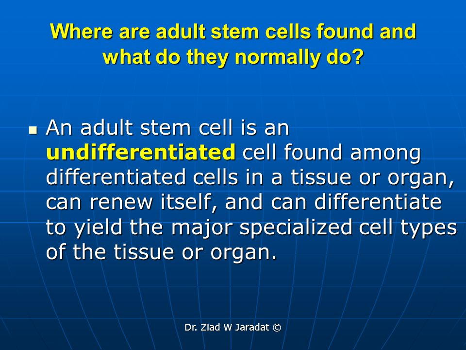 Dr.Ziad W Jaradat © Where adult stem cells are found.